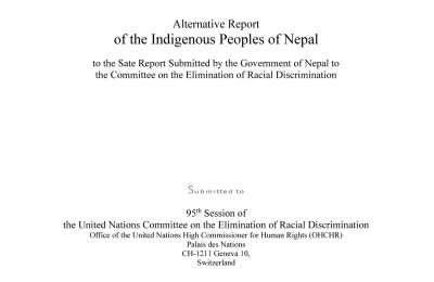 Alternative Report Submitted to the 95th Session of the UN CERD