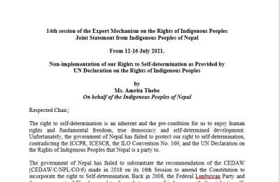 Joint Statement from Indigenous Peoples of Nepal