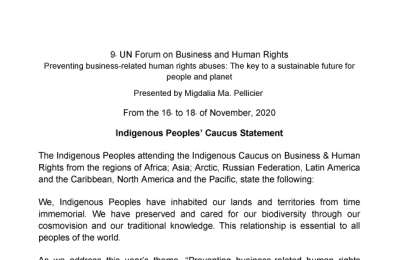 Statement of Indigenous Peoples Caucus to BHR Forum